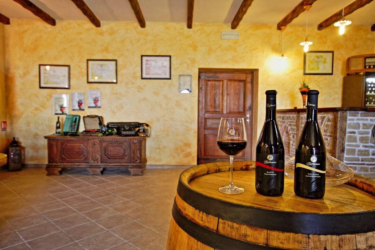 Degustacije vina u vinskom podrumu