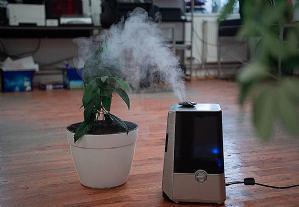 Suhi zrak loš je za vaše zdravlje - 5 savjeta kako osvježiti prostor