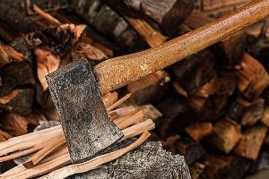 B2B razgovori u građevinarstvu (drvene konstrukcije) i šumarstvu