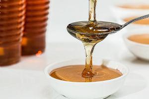Međunarodni pčelarski sajam u Bjelovaru privući će ljubitelje meda i vina
