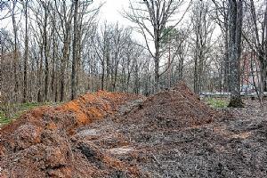 Trebam ponudu za krčenje zemljišta