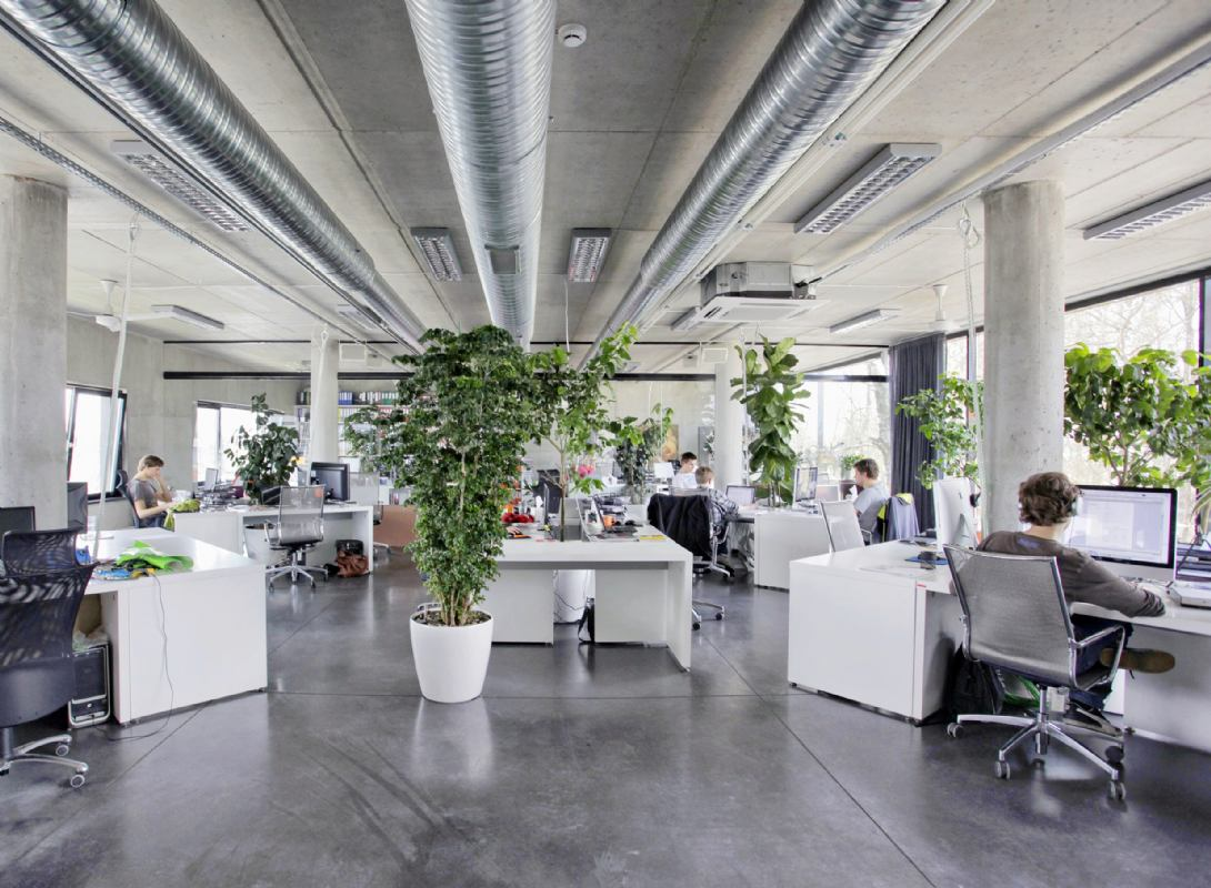 Sobne biljke u uredu opuštaju, ali i pročišćuju zrak od toksičnih kemikalija